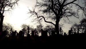 Исторические корни заботы о памятниках